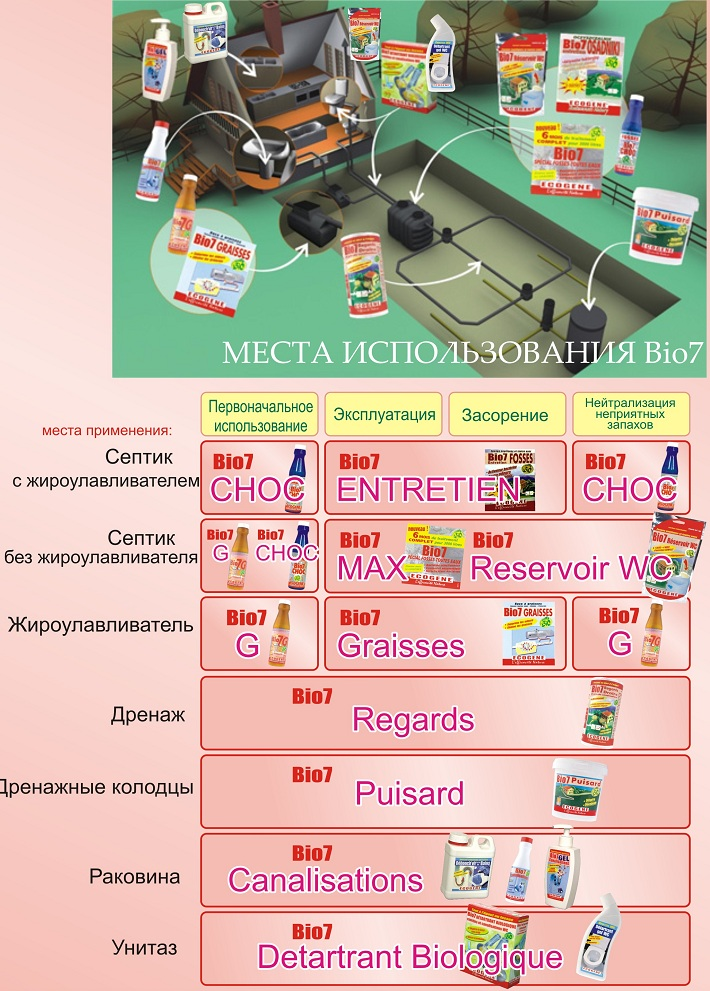 BIO7.jpg